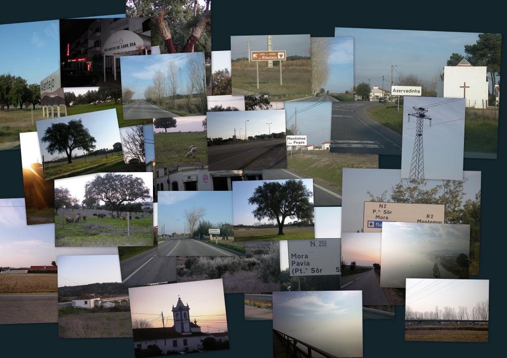 Mosaico das Fotos do reconhecimento do BRM 200 km Tejo-Sorraia-Tejo [2012}